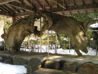 箱根神社‐8