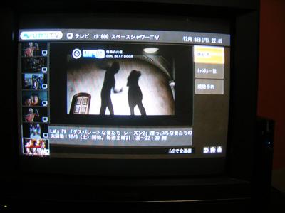 h20.12.8光tv03 のコピー.jpg