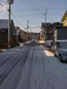 h21.3.12雪 のコピー.jpg
