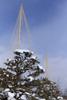 h22.1.15雪吊り のコピー.jpg
