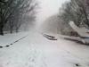 h22.3.27雪 のコピー.jpg