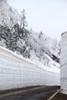 h22.4.22雪の回廊と霧氷 のコピー.jpg