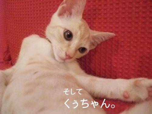 20090902_6.jpg