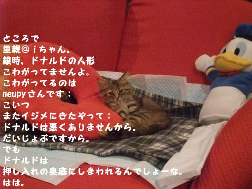 20091025_3.jpg