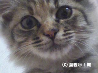 20091029_5.jpg