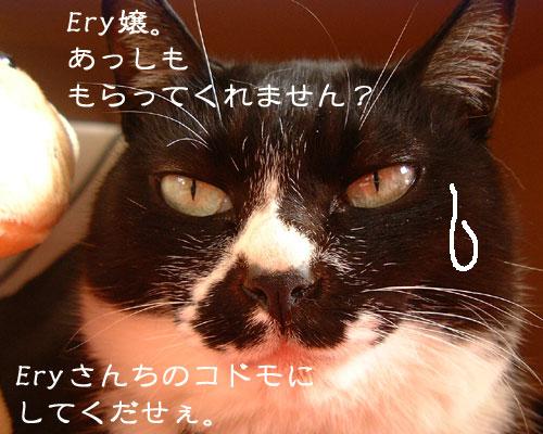 20091105_10.jpg