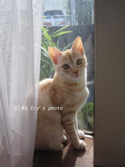 20091105_8.jpg