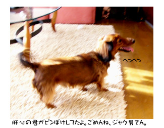 20051225101451.jpg