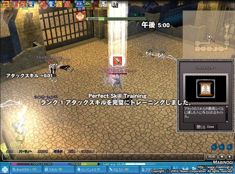 mabinogi_2009_02_15_005.jpg