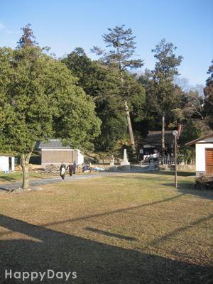 2009-01-15-1.jpg