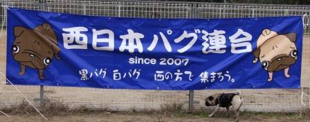 f-091122-s1