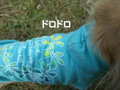 FC5-610のコピー