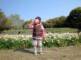 ryokuchi06.jpg