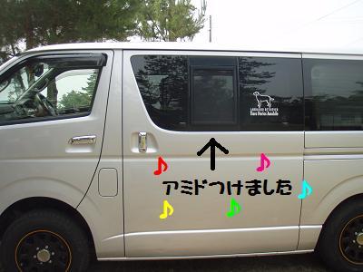 P6134345-1.jpg