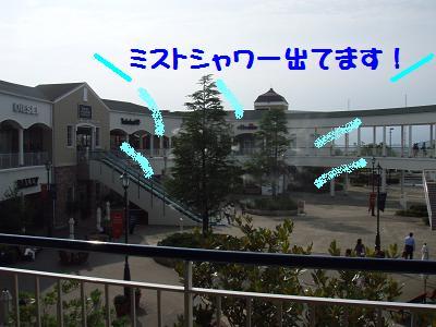 P7095069-1.jpg