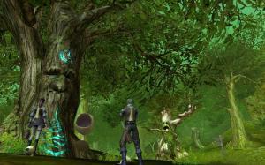 (*゚∀゚)*。_。)*゚∀゚)*。_。)ウンウン 大きな木の長老!いいねb