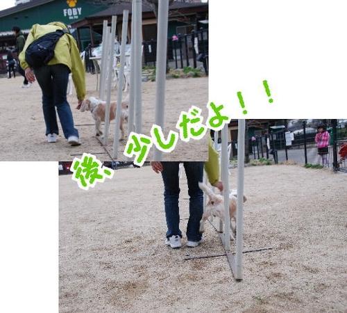 2010・02・21ヅカd
