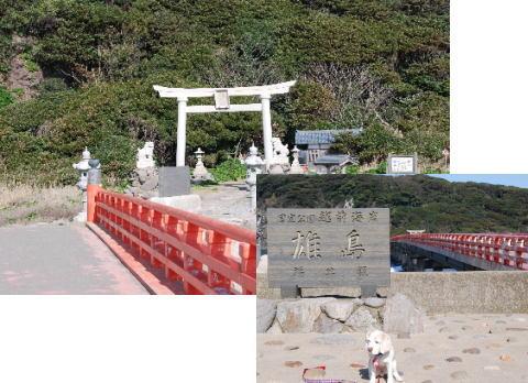2010・04・04雄島1