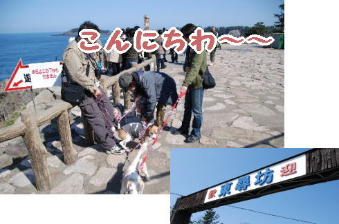 2010・04・04東尋坊1
