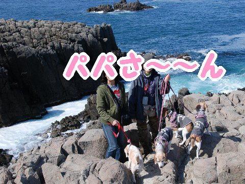 2010・04・04東尋坊3