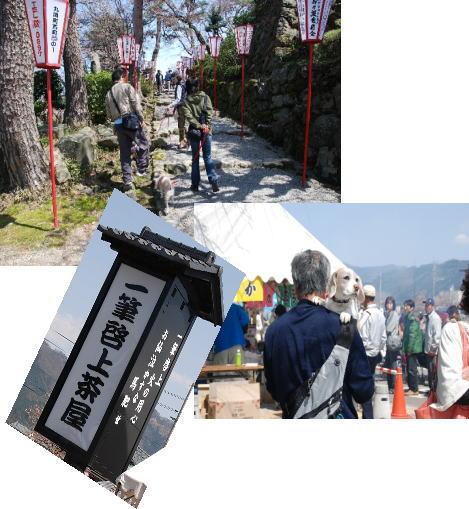 2010・04・04丸岡城2