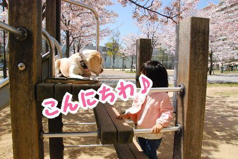 2010・04・10西宮3