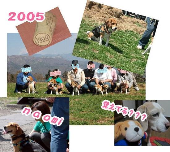 2010・04・15竹輪君