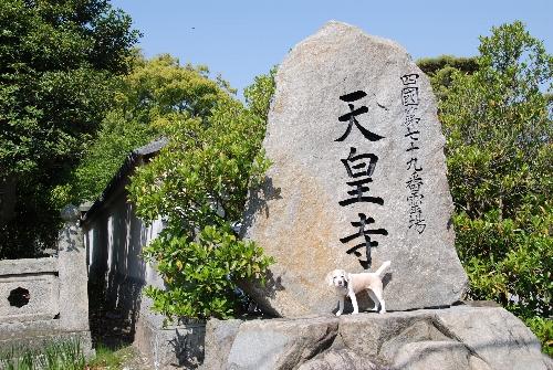 2010・04・30天皇寺