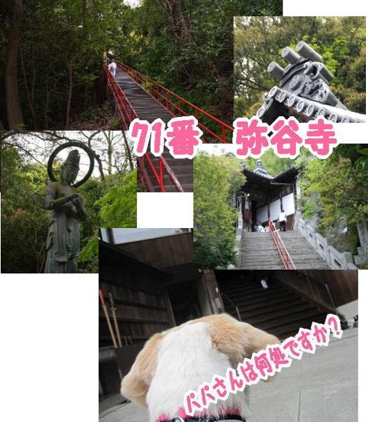 2010・04・30弥谷寺1