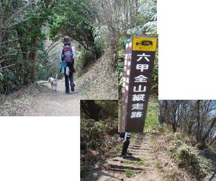 2010・05・03紅葉谷道1