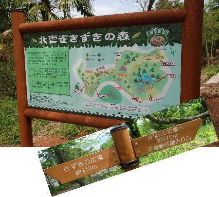 2010・05・07きずきの森1