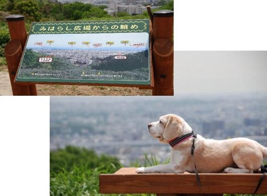 2010・05・07見晴らし広場