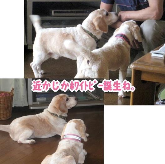 2010・05・07しゅう太&のん