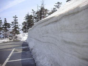 駐車場が・・偽、雪の大谷。。(笑)