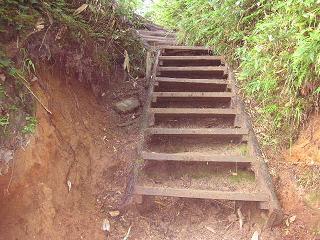 こんな階段がたくさん