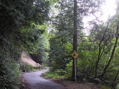 まずは林道