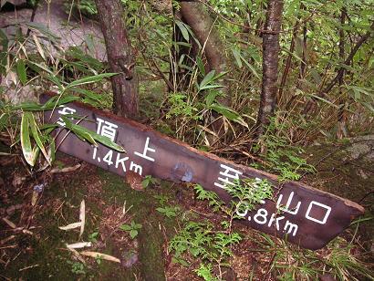 登山口からまだ0.8キロ