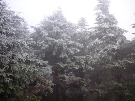 ♪♪雪の中へ~?