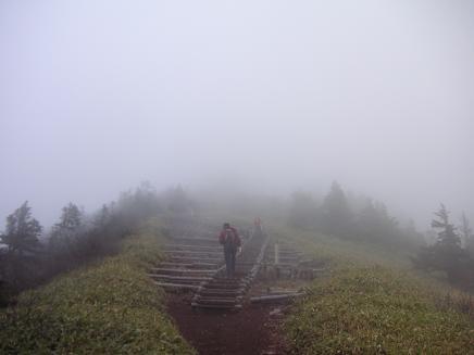 植物保全のための木階段