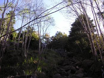 岩ゴロンゴロンの急登
