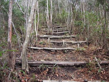 階段で急登