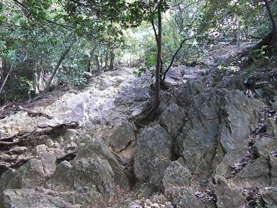 岩岩ちっくれす。