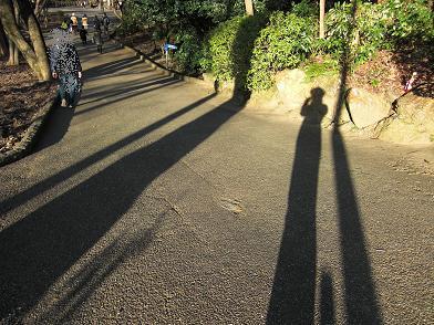 影でコラボ