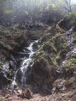 林道に濁流が。。