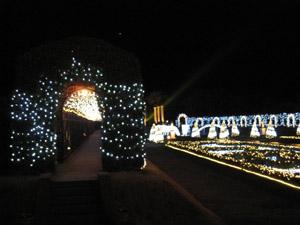 光の宮殿4