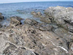 佐賀関 海岸1