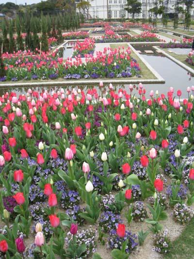 チューリップ庭園