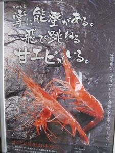 甘エビポスター