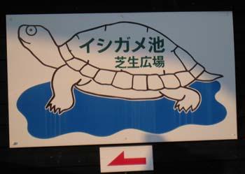 イシガメ池