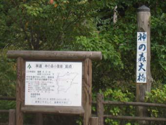 神の森大橋3